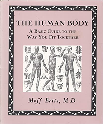 Image for The Human Body a Basic to the Way You Fit Together